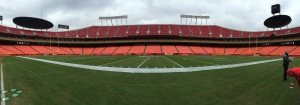 Panorama of the field.